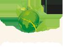 A bunch of fresh innovative ideas. SN Greenovation combined of GREEN + INNOVATION = Renovation of space bringing them renewed life